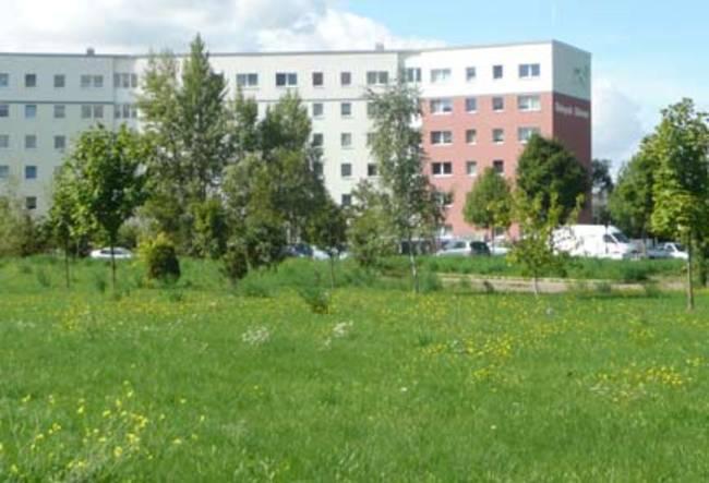 Hausansichten: 2-Raum-Wohnung Am Hohen Ufer 34